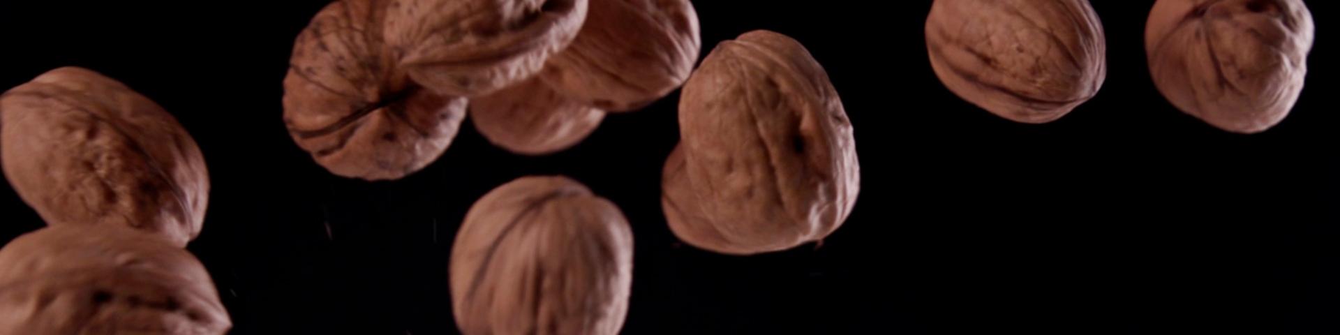 VentaMoncalvillo – Queso, miel y nueces